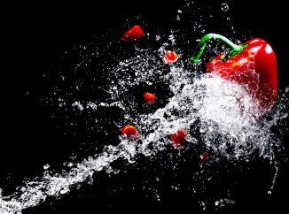 Top 5: Vegetaraj kaj Veganaj Restoracioj en Bolonjo